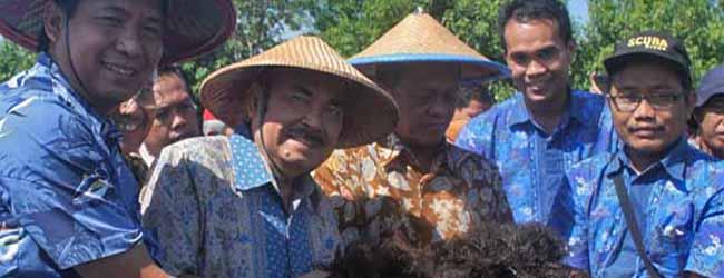 Kunjungan Bupati Pacitan di Mangrove Center